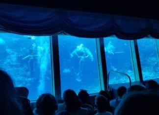 Weeki Wachee Mermaid Show Underwater Theatre in Florida